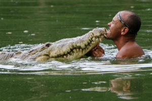 Meet this man who swims and plays with a giant crocodile